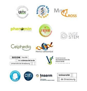 Bloc Logos IMCbio