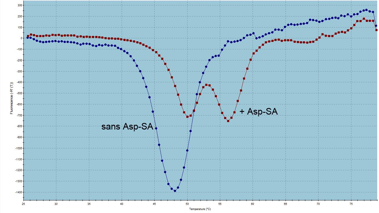 Phusion curve