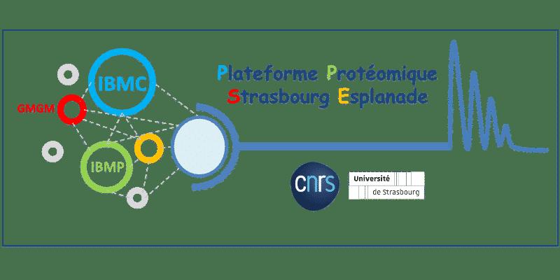 logo de la plateforme protéomique